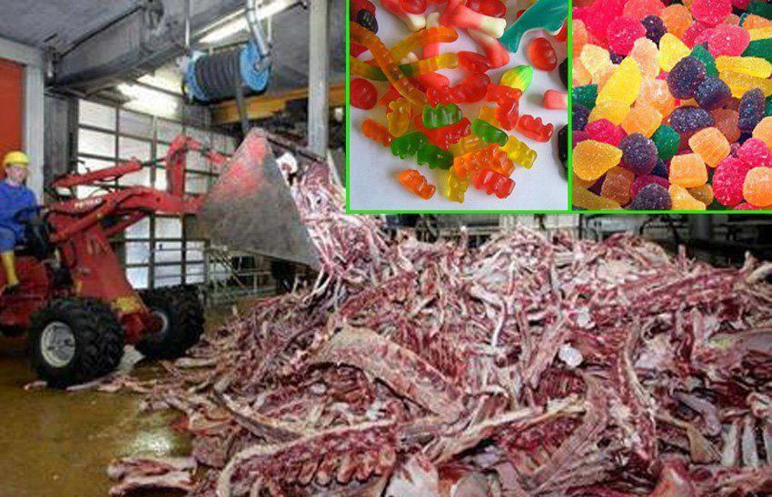 After Watching How Gummy Candies Are Really Made, You'll
